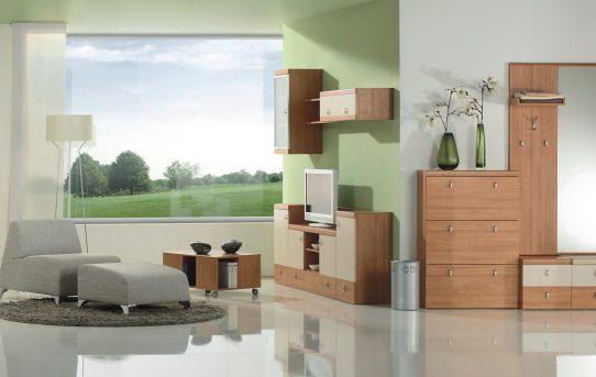 Kuhinja in jedilnica v odprtem prostoru