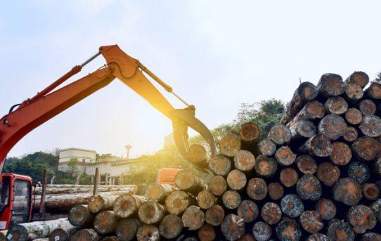 Lepljen les cenik je tudi spletna informacija